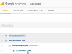 Google Analytics how to add a website to your account and get a Tracking ID : Default view All Web Site Data